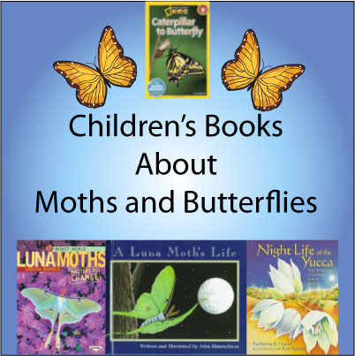 moth-childrens-books
