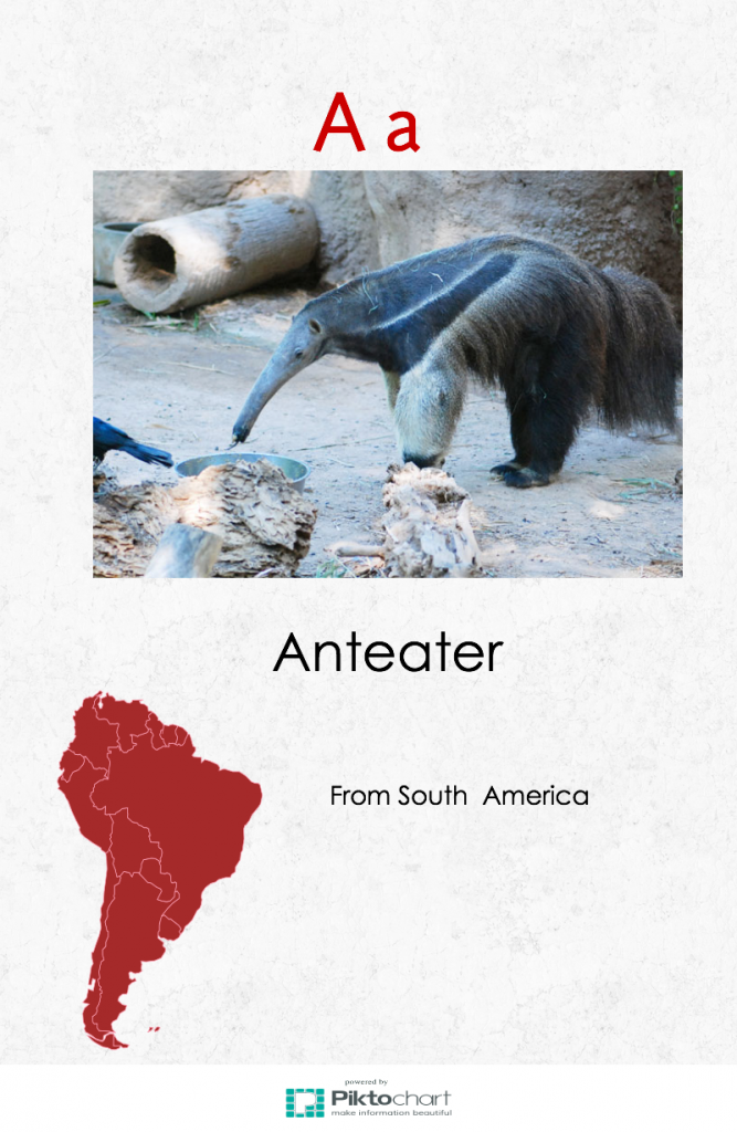 anteater-page-1