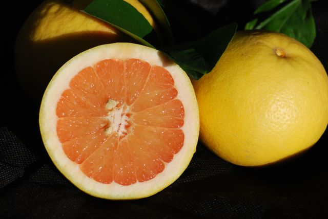 grapefruit-fruit-1