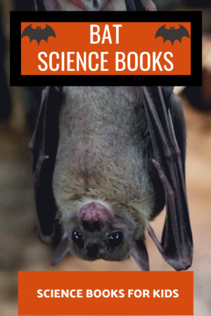 bat science for kids – Growing With Science Blog