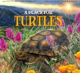 turtles-place-for