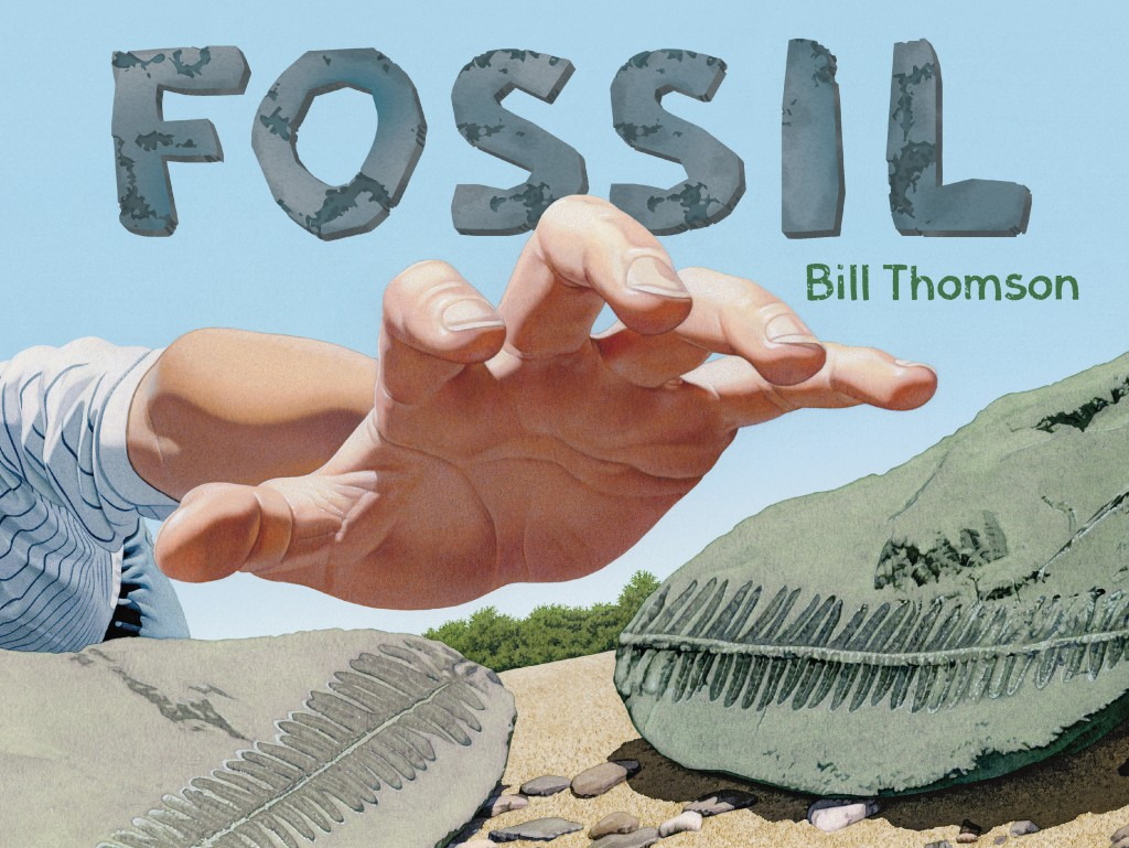 Fossil cover