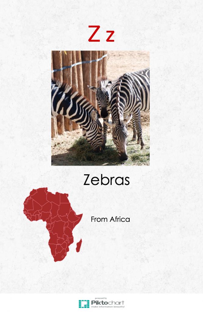 zebra page