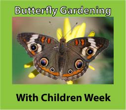 butterfly gardening week