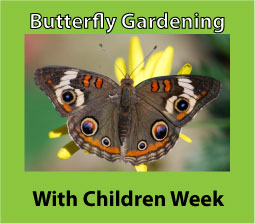 butterfly-gardening-with-children
