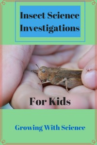 Insect Science Investigations