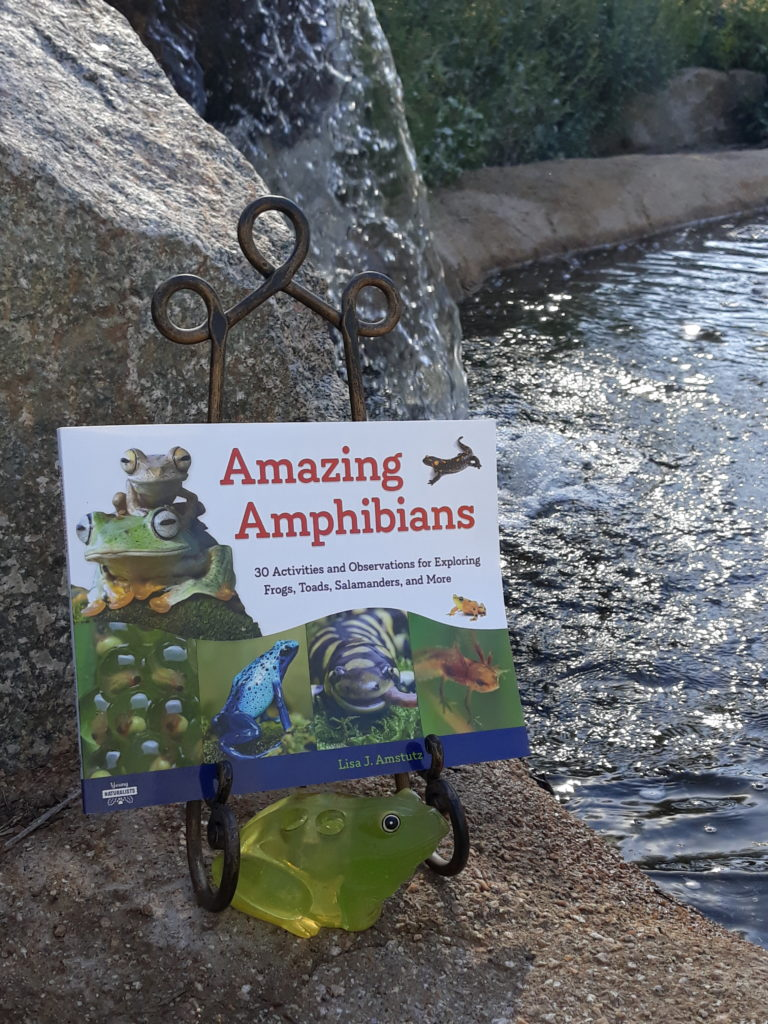 STEM Friday #Kidlit Amazing Amphibians by @LJAmstutz