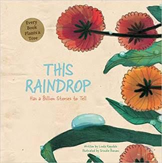 #Nonfiction Monday #kidlit:  This Raindrop