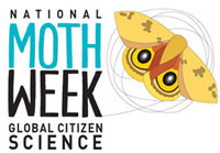 Getting Ready for #NationalMothWeek