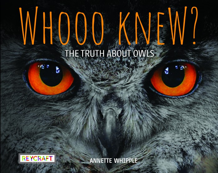 STEM Friday #Kidlit Whooo Knew? The Truth About Owls