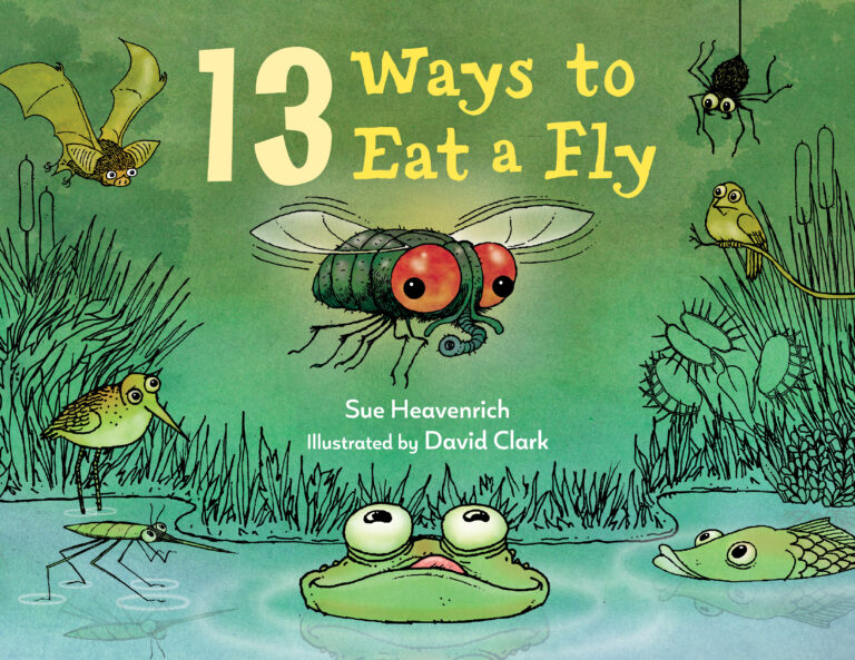 #STEM Friday #Kidlit 13 Ways to Eat a Fly